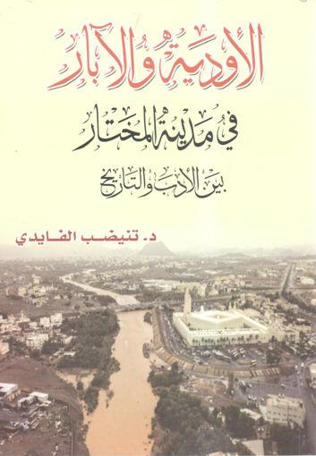 Picture of الأودية والآبار في مدينة المختار بين الأدب والتاريخ